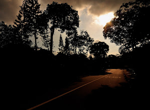Photo: Forgotten Road