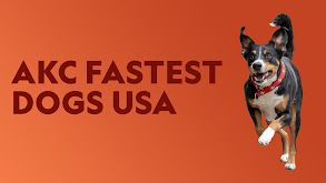 AKC Fastest Dogs USA thumbnail