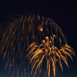 Golden Display by Vonelle Swanson - Public Holidays July 4th ( holiday, color, fireworks, july 4th, entertainment )