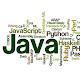 Top Programming Languages APK