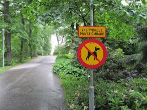 Photo: Near entrance to Kaisaniemen kasvitieteellinen puutarha (Kaisaniemi Botanic Garden)