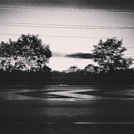 Chevron Lines by Sorina Stallard - Illustration Abstract & Patterns