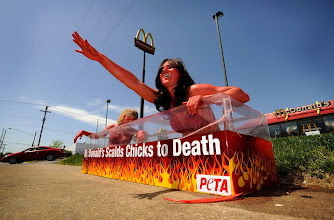 Photo: Lindsey Rajt, of Paw Paw, Mich. (right), and Ariel Rubin, of New York, N.Y., both members of PETA protest the alleged abuse that chickens suffer in slaughterhouses that supply the fast-food chain at the McDonalds off of Russellville Rd. on April 22, 2009.