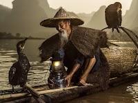 Aziatische visser in smalle boot met lamp en 2 aalscholvers
