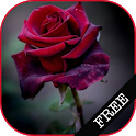 I Love Flowers Live Wallpapers, Free Rose Images icon