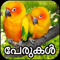 2020 പക ഷ കള ട പ ര കൾ Birds Names Detail Malayalam App Android App Download Latest