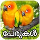 Download പക്ഷികളുടെ പേരുകൾ Birds Names Detail Malayalam App For PC Windows and Mac
