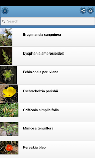Medicinal herbs- screenshot thumbnail