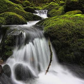 Fluid by Kai Süselbeck - Landscapes Waterscapes