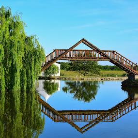 by Natalie Zvonar - Buildings & Architecture Bridges & Suspended Structures (  )