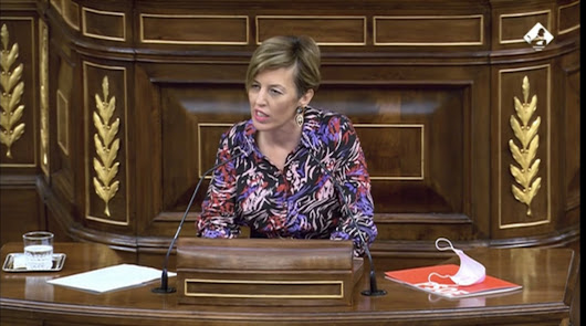 Sonia Ferrer carga contra Vox por el uso de policías, guardias y militares