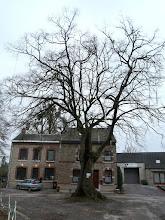Photo: Place du vieux Tilleul