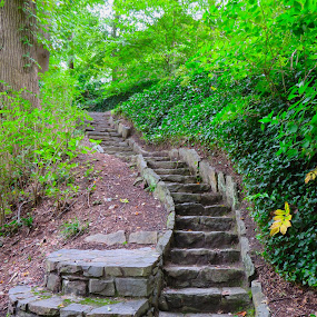 Moving On Up by Susan Englert - City,  Street & Park  City Parks ( rock, sc, falls, nature, stairs, greenville, park, stone,  )