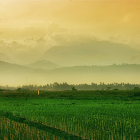 morning west sumatera by Andika Putra - Landscapes Mountains & Hills