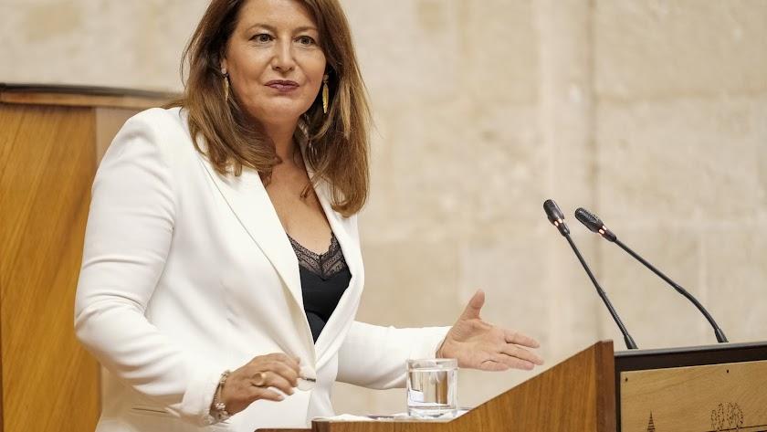 La consejera durante su intervención en el Parlamento andaluz.