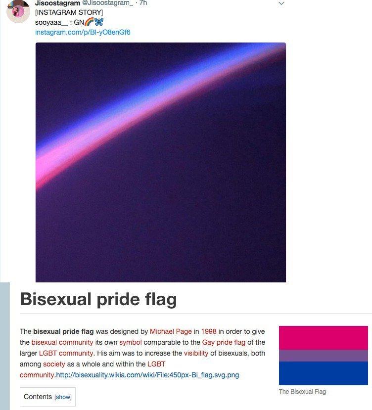 jisoo bi flag