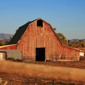Heart of America by Liesl Ross Photos - Buildings & Architecture Other Exteriors ( farm, ranch, barn, america, heartland, country )