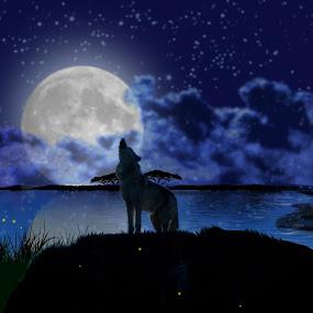 Howler by Charlie Alolkoy - Illustration Animals ( moon, sky, wolf, stars, lake, night )