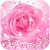 Diamond Pink Rose Theme file APK for Gaming PC/PS3/PS4 Smart TV