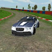Fast 3D Furious Rally Driver