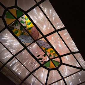 through skylight.. by Bill Steffler - Public Holidays Other