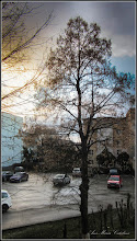 Photo: Calea Victoriei - 2016.03.08