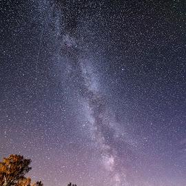 Milky way by Tony Mortyr - Landscapes Starscapes ( sky, milky way, stars )