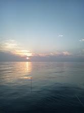 Photo: だいぶん日が傾いて、ウキが見やすくなった。