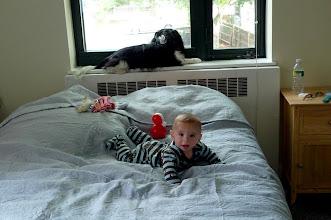 Photo: Half a year old.
