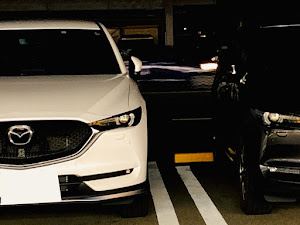 CX-8 KG2P 31年式  AWDのカスタム事例画像 kamoさんの2020年02月17日20:25の投稿