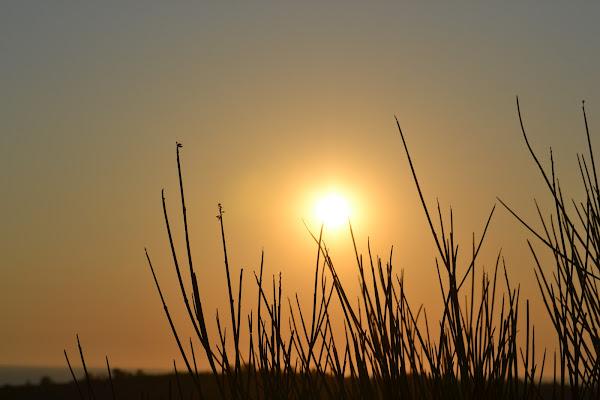 Sun..  di ale_lp__94