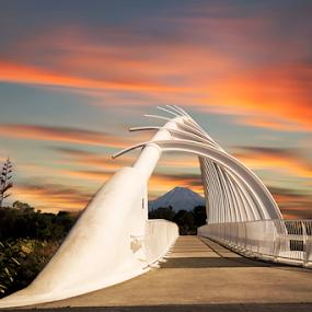 Te Rewa Rewa Bridge, New Plymouth NZ by Anupam Hatui - Buildings & Architecture Bridges & Suspended Structures ( structure, iconic, bridge, landscape, dusk, structures )