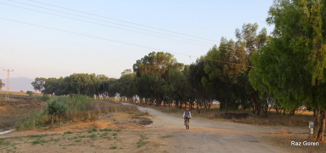 ליד הקישון ליד כפר ברוך
