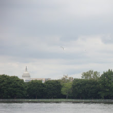 Photo: The White House, off in the distance.