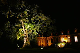 Photo: Illuminations Platane d'Orient et Château