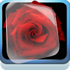 Rouge et noir Live Wallpaper icon