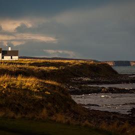 Seaview Cottage by Scott Hay - Landscapes Beaches ( scotland, north sea, white cottage, sea, beach grass, coastal, john o groats, coast,  )