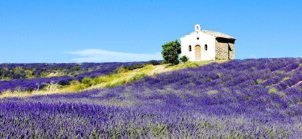 Provença-Alpes-Côte d'Azur