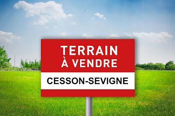 terrain à Cesson-sevigne (35)