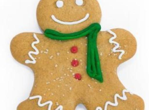 Fast Track Gingerbread Cookies Recipe