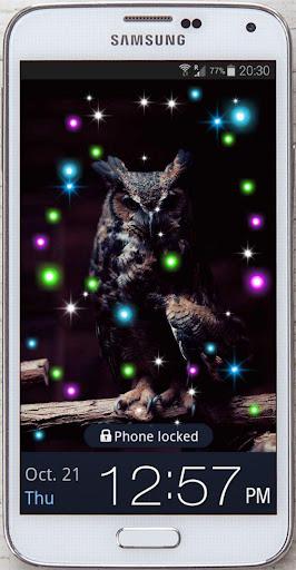 Owl Night Bird live wallpaper