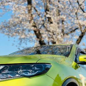 エクストレイル T32 2018 20X 4WDのカスタム事例画像 しじみさんの2019年04月04日20:33の投稿