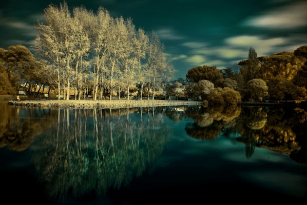Autumn infrared di miyomo