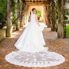 Long Veil Bridal by Matthew Chambers - Wedding Bride ( bride, dress, bridal, veil, white dress, hall, curvy, portrait, posed, thin, beautiful, classic, white, portraits of women, vines, wedding, portraiture )