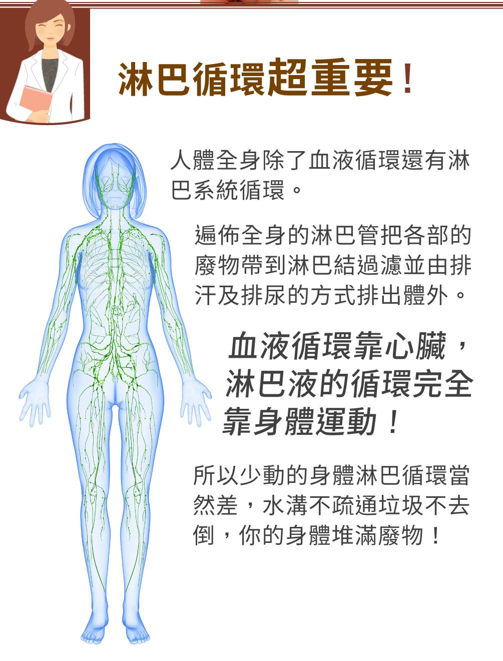 淋巴按摩全身循環好自然健康/淋巴引流複方按摩油