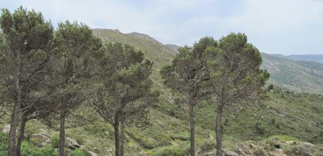 Photo: sortie Sant Pere 2013