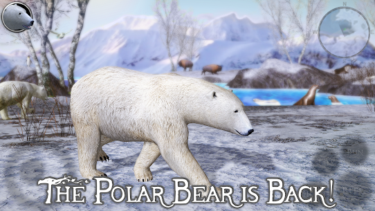 Polar Bear Simulator 2 1.0 (Full Paid) Apk Download 1
