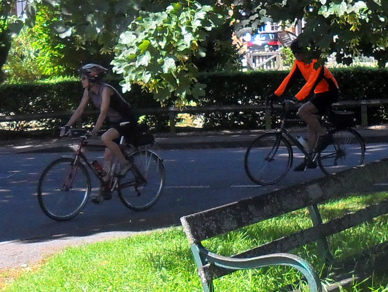 two cycle under a shady tree