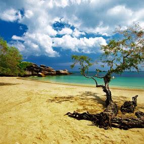 Tanjung Tinggi by Taufiqurakhman Ab - Landscapes Travel