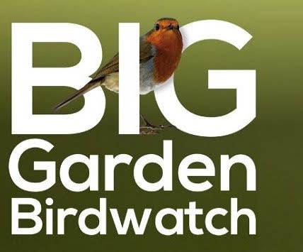 Birdwatch could help local elderly residents
